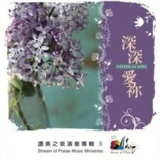 深深愛你-讚美之泉演奏(5)/CD