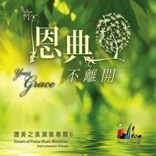 你恩典不離開--讚美之泉演奏(6)/CD